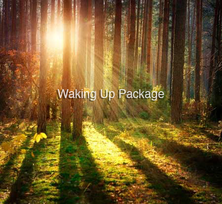 Waking Up Package